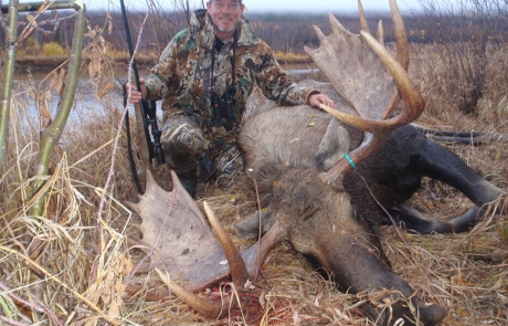 Moose Hunt in Alaska