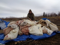 best moose hunts