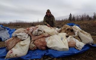 best moose hunts