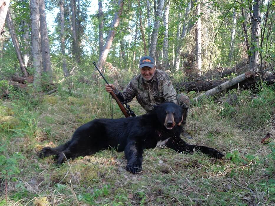 Black Bear Hunting in Alaska