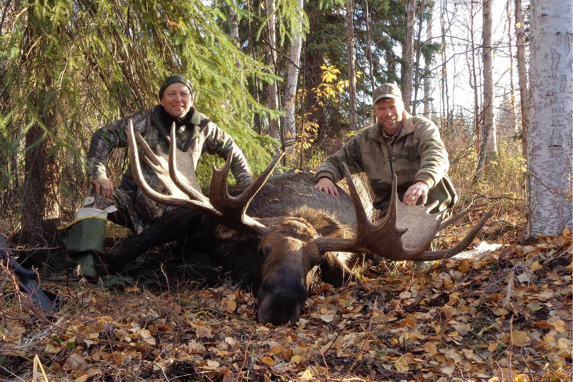 Moose Hunting Banner