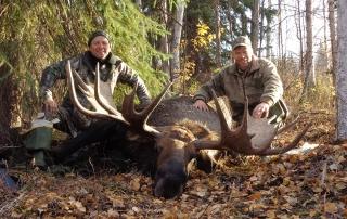 Alaska moose hunting