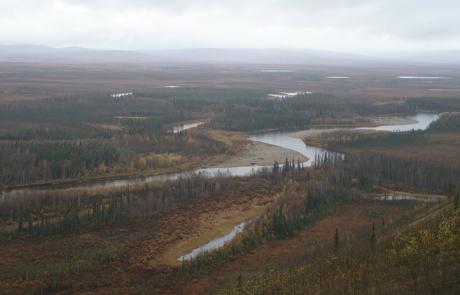 Alaska-Moose-Hunting