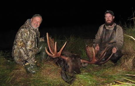 Nice Alaska Moose