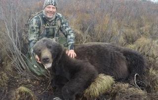 grizzly bear hunting alaska