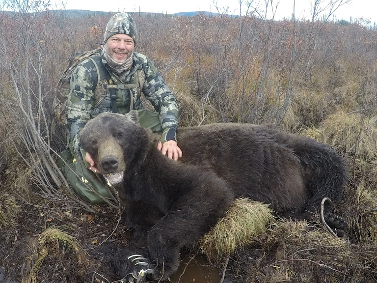 grizzly bear hunting alaska